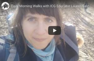 Daily Morning Walks