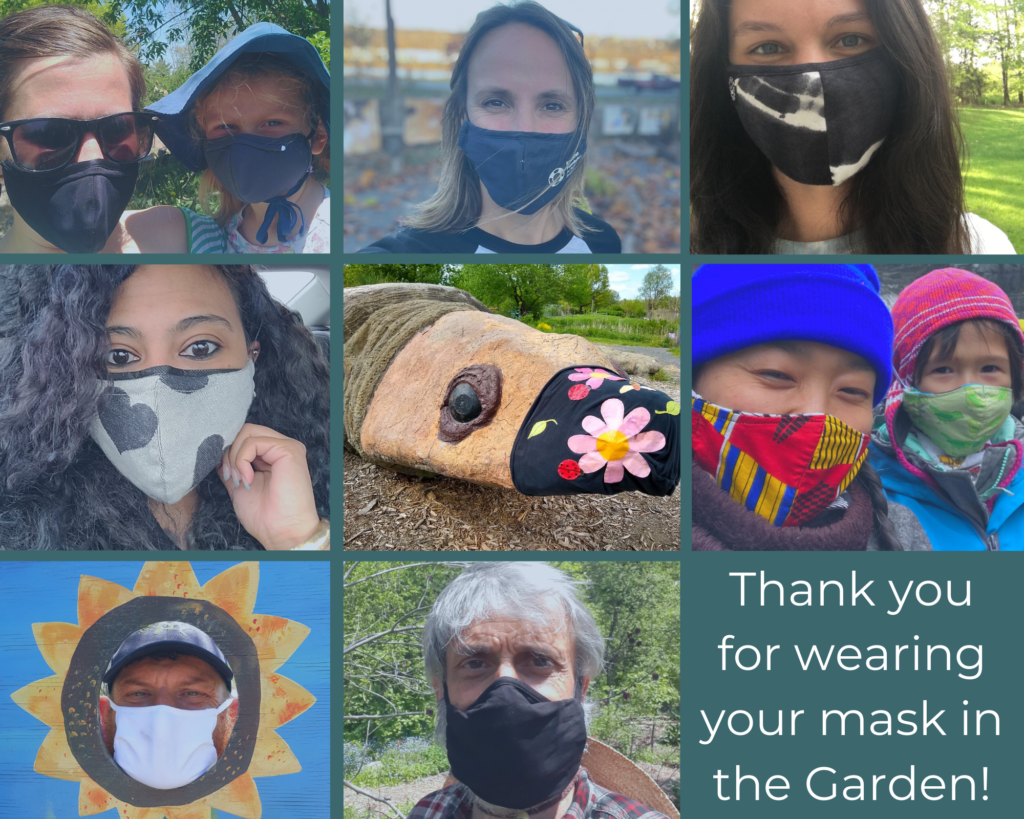 Photo collage of the ICG team members wearing protective face masks.